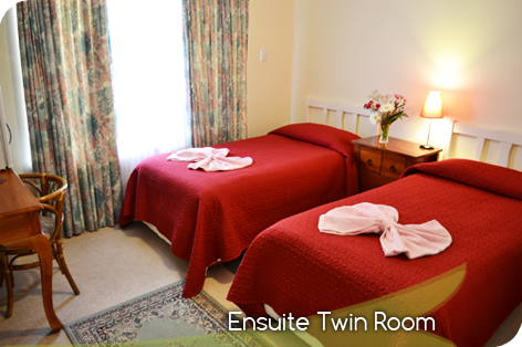 Ensuite Twin Room